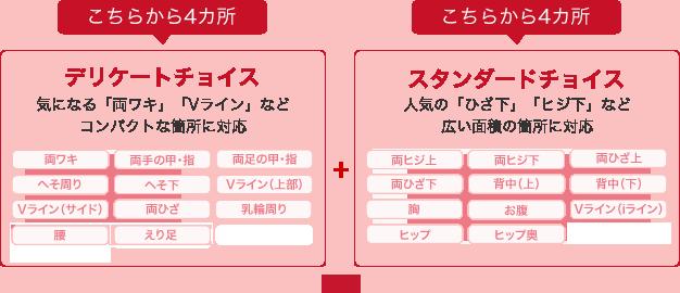 img-parts-choice