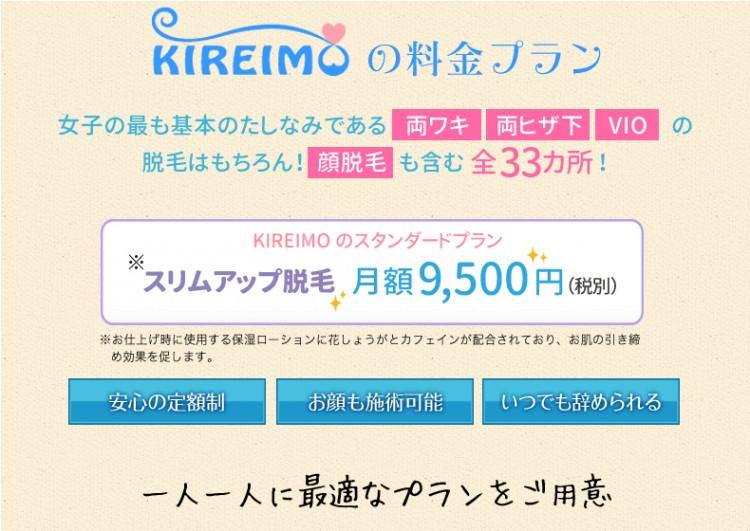 kireimo-ryoukin10