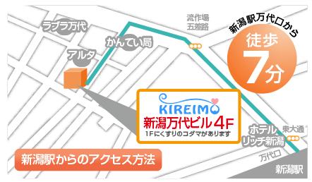 nigata_map