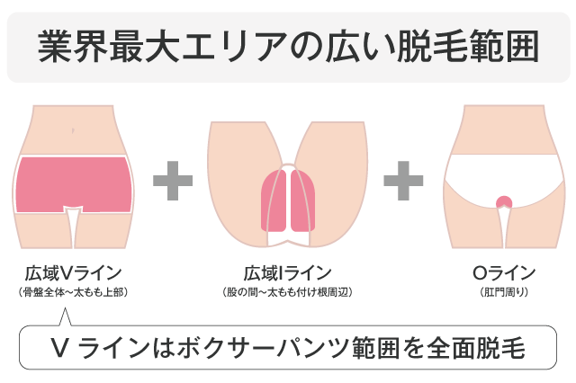 pic_gaiyou01