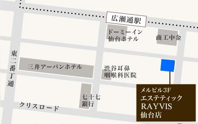 レイビス(RAYVIS) 仙台店